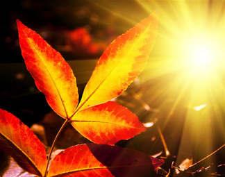 Natureza 023-Raios de sol.jpg