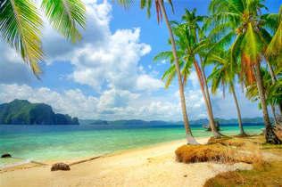 Praia 005-Tropical com palmeiras.jpg