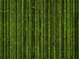 Reprodução 007-Parede de bambu.jpg