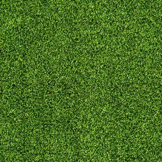 Reprodução_003-Fundo_de_grama_verde.jpg