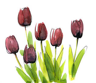Floral 039-Desenho de tulipa.jpg