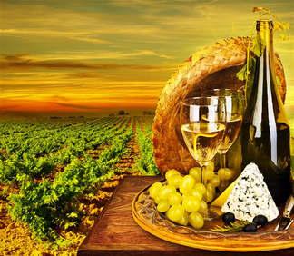 Gastronomia 058-Vinhedo.jpg