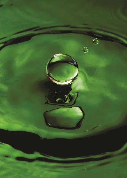 Quadro Gota de Água - QD030
