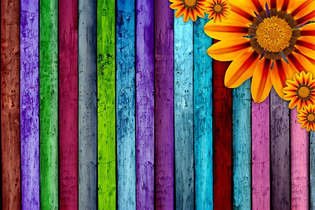 Floral 041-design colorido.jpg