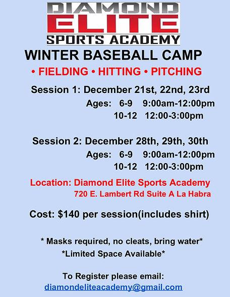 Winter Baseball Camp.jpg