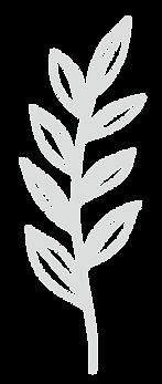 Plantas 4 al 11-07.png