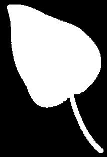 Planta 28.png