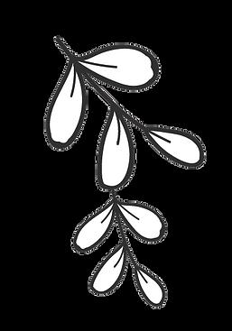 Plantas 4.png