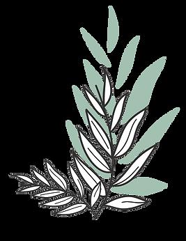 Plantas 1.png