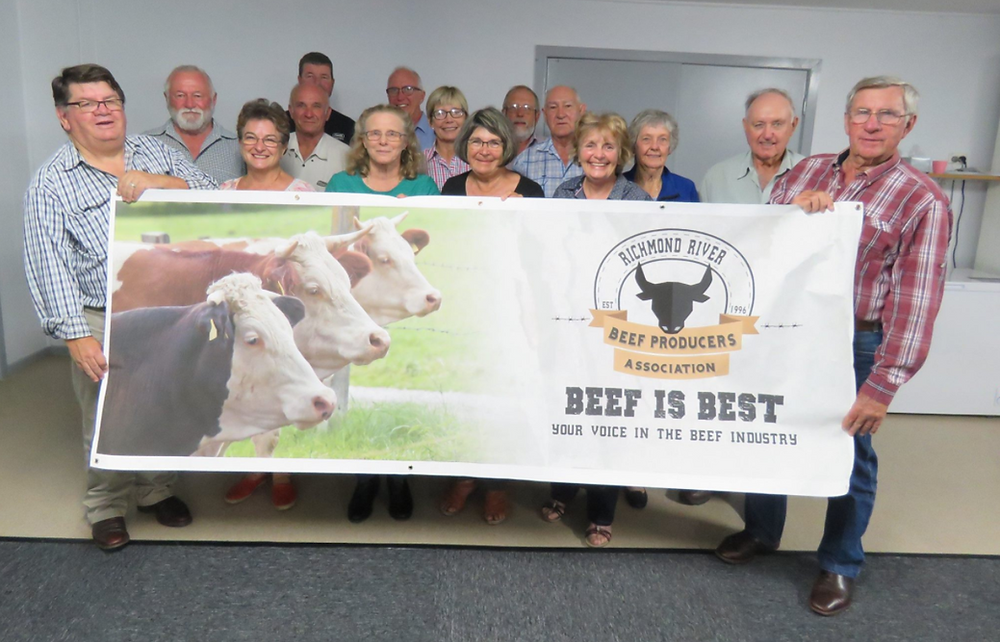 Richmond River Beef Producers Association | Lyncoranne Angus