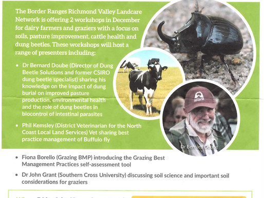 Dung Beetle, Soils, Livestock Health and Pasture Production Workshop