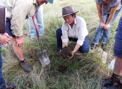 'Understanding Our Soils - Beef Cattle' Workshops