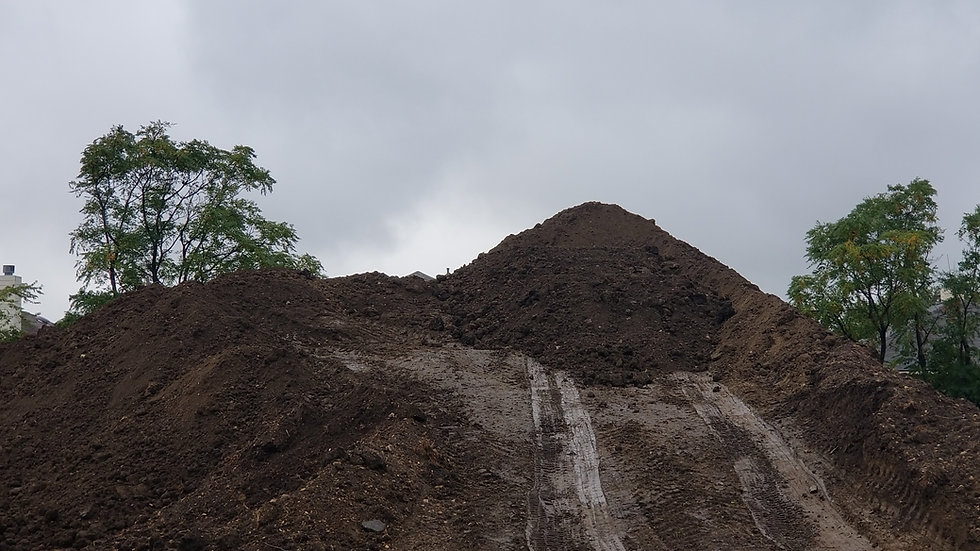Black Fill Dirt