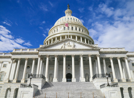 What the Next Stimulus Package Might Look Like – and How That Affects Your Cardmembers