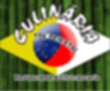 TOK ORIENTAL logo do banner 2017 .jpg
