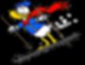 S Ski 18-1.png