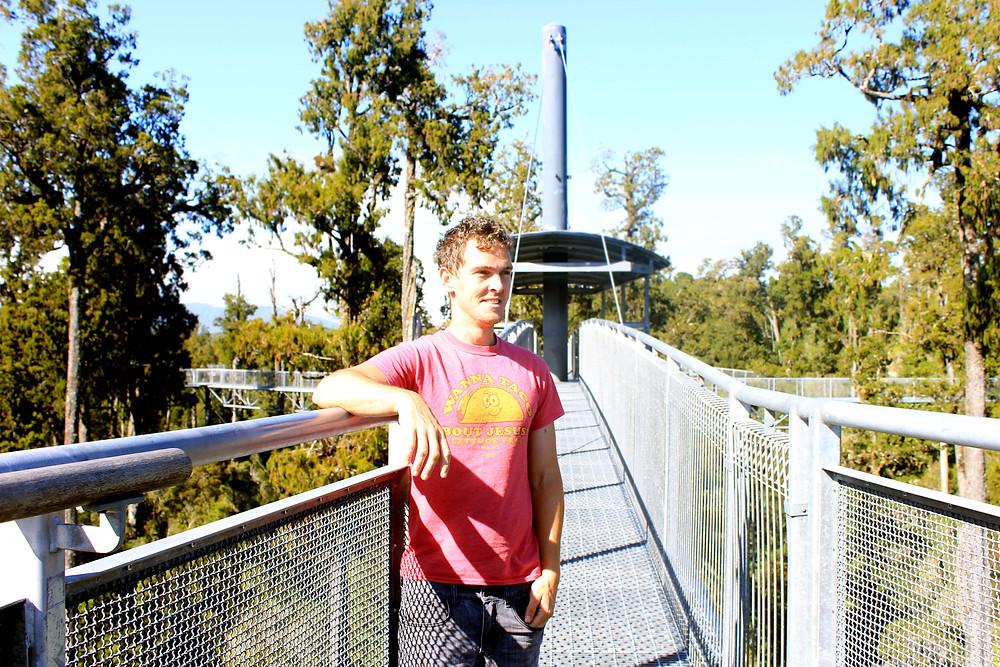 Punakaiki, Hokitika, Greymouth, Things to do New Zealand, Treetop walkway, New Zealand Attractions