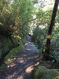 180915-West-Coast-New-Zealand.jpg