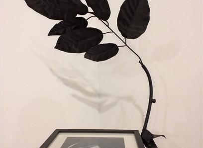 La serie 'Un Sonido Negro', de  Abel Jaramillo