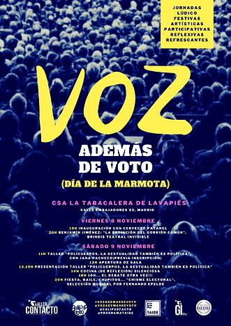 Cartel_Voz_además_de_voto.png