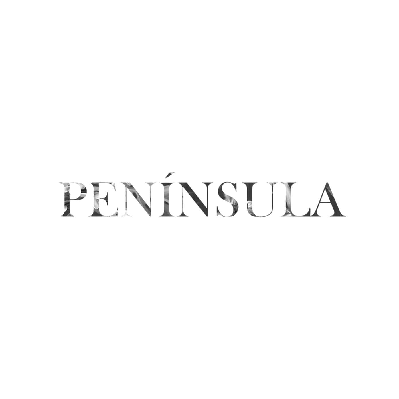 Logo_Peni%C3%8C%C2%81nsula_edited