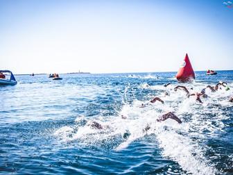 В Израиле 8 марта стартует Кубок Европы по плаванию на открытой воде