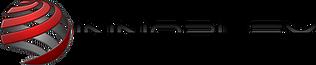 Innoplex, LLC Logo