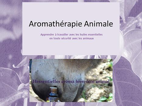 Aromathérapie Animale.png