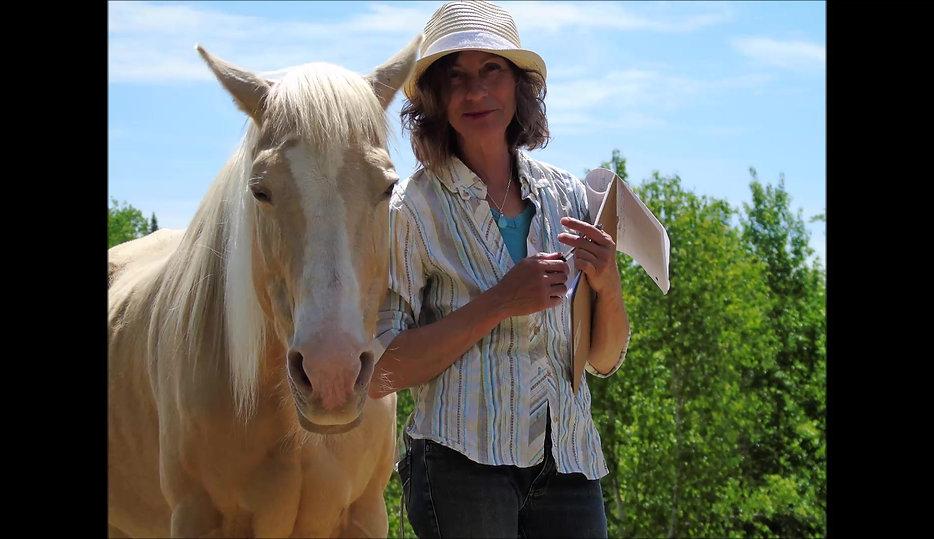 Les chevaux m'ont dit....