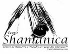 Logo Écurie Shamanica Through the Horses