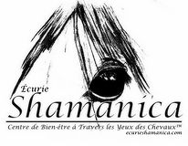 Logo Écurie Shamanica Through the Horses