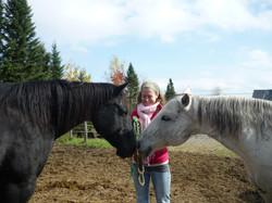 Healing throught the horses