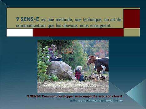 9 SENS-E fiche formation.jpg