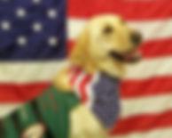 Smoky-Mountain-Service-Dogs.jpg