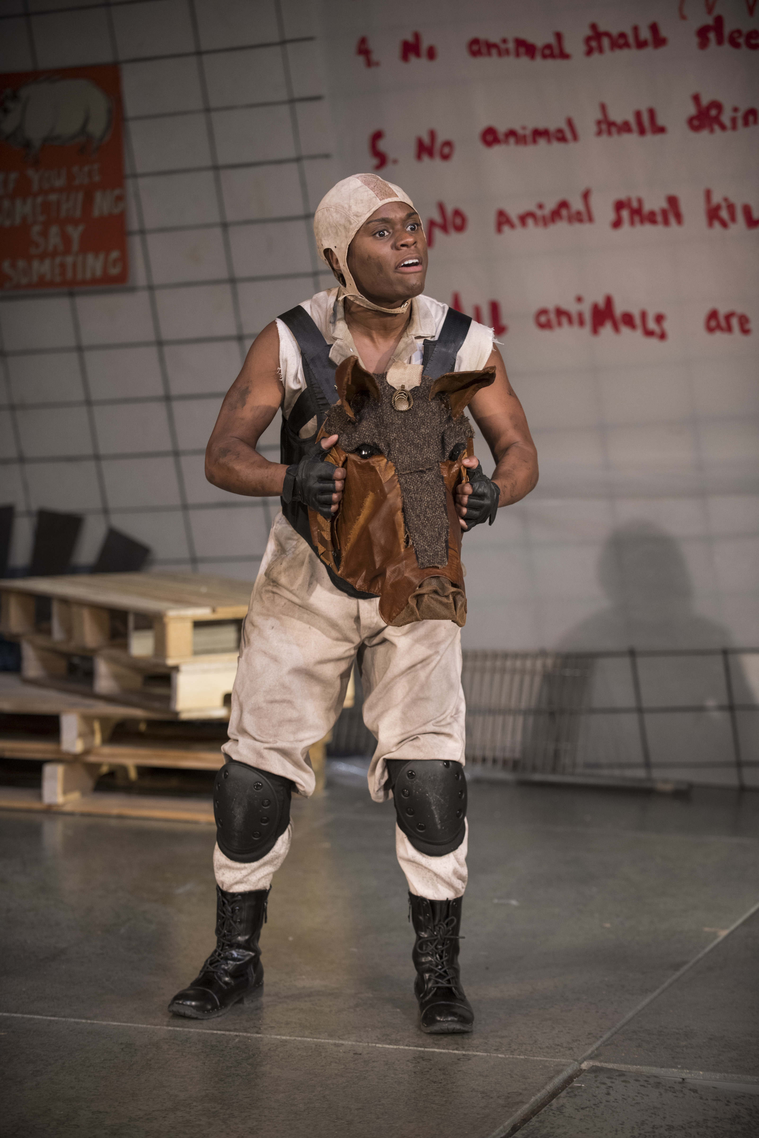 Milwaukee Rep- Animal Farm