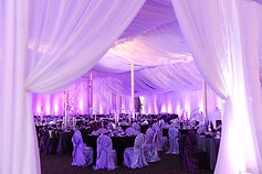 Dream Day Decor Our Products