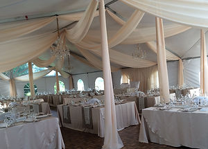 Dream Day Decor Backdrops and Draping