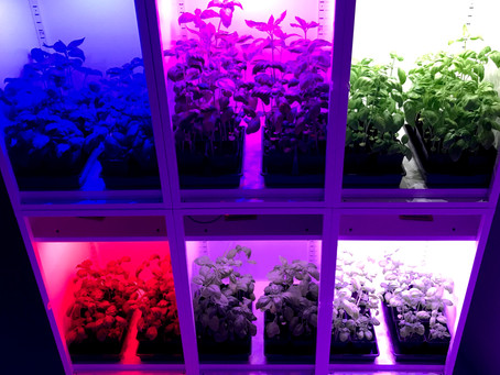 Indoor farming and horticulture light-emitting diodes - Share knowledge, drive development
