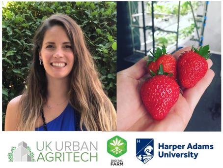 Webinar: What is the Secret of Growing Strawberries in TCEA