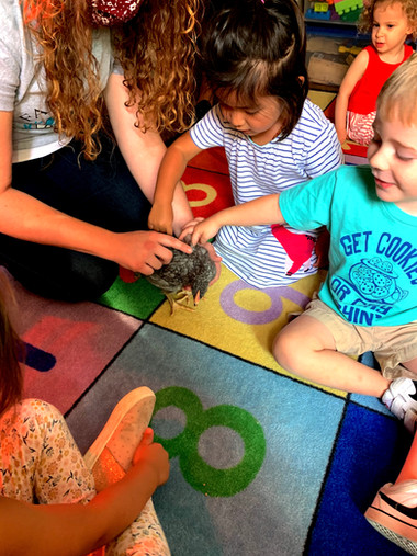 Preschool students meeting the new baby