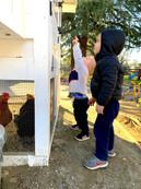 Fairmont Private School Agriculture Prog
