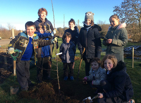 The Bythams School Orchard Planting