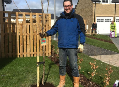Plant a fruit tree for every new house