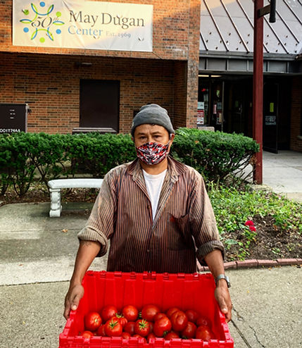 may dugan tomatoes.JPG