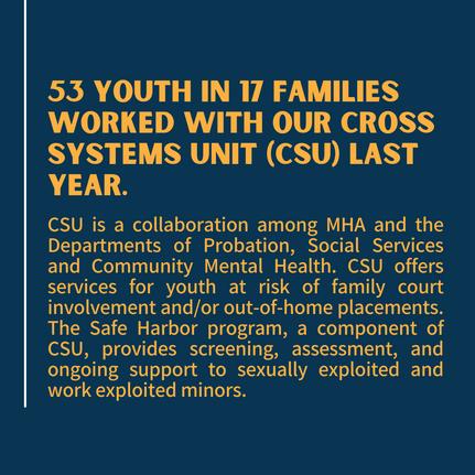 Cross Systems Unit (CSU)