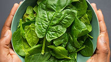 FF Content Stuff-Salad Leaves.jpg