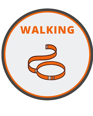 Scout - Walking  Badge.png