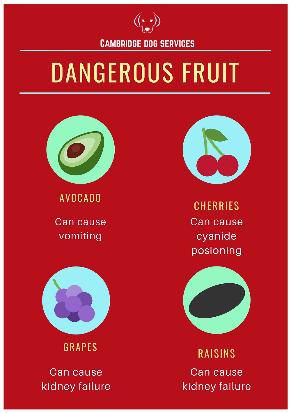 food that are dangerous to dogs