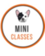 MiniClasses.png