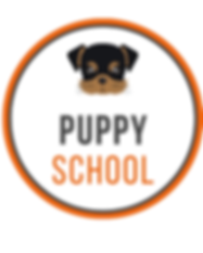 FB STORE - PUP.png